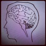 foto hersenen